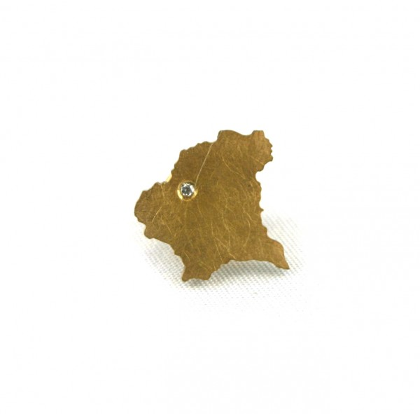 Amberg-Pin vergoldet - Umriss der Oberpfalz